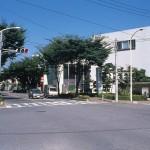 けやき通りと産業文化センター