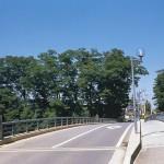 入間川の上橋と大ケヤキ