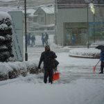 雪(続報)
