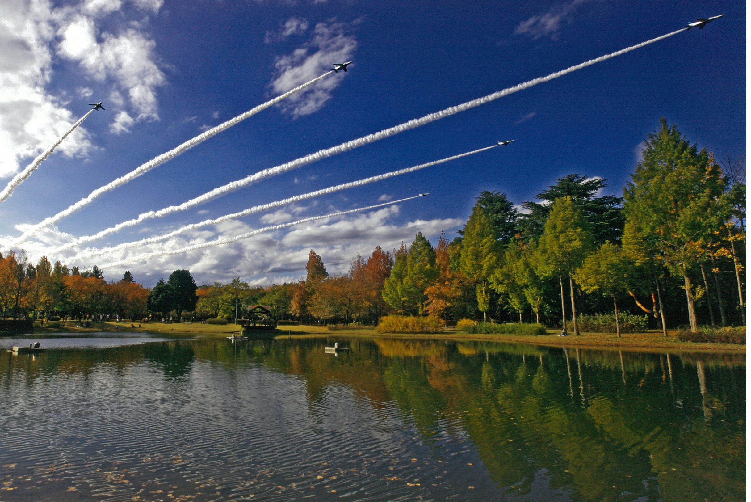 彩の森入間公園(観光カレンダー)