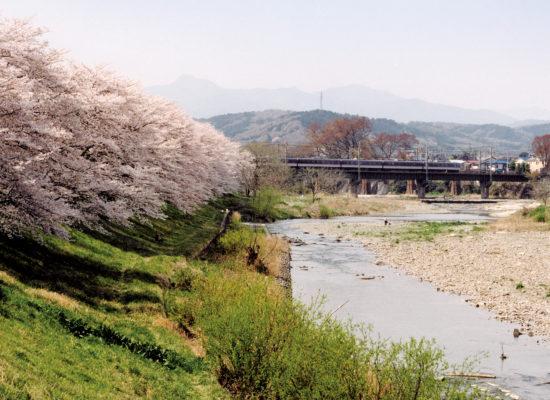 入間川(中橋)